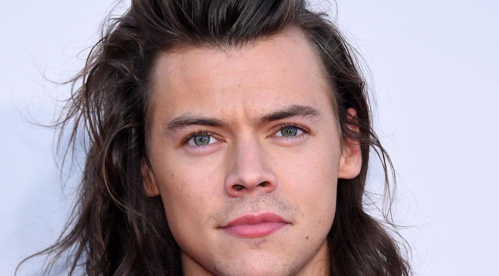One-Direction-Star Harry Styles dreht wohl bald den nächsten großen Kinofilm