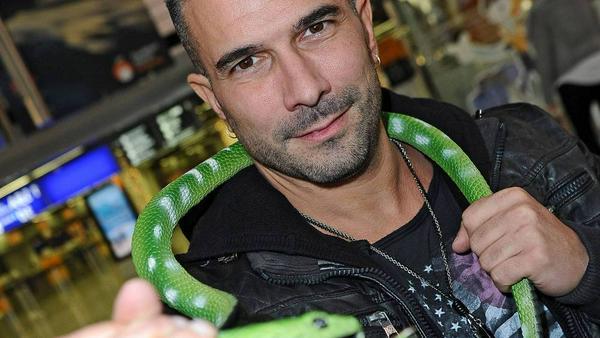 Er ist der amtierende Dschungelkönig: Marc Terenzi