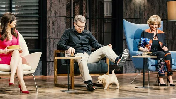 """""""Die Höhle der Löwen"""": Die Investoren Judith Williams (l.), Frank Thelen und Dagmar Wöhrl nehmen den rutschfesten Hundenapf """"Yummynator"""" unter die Lupe"""