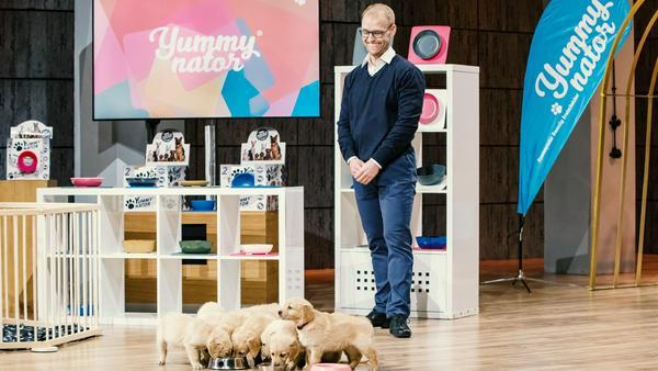 Die Hundewelpen stehlen Marcus König die Show