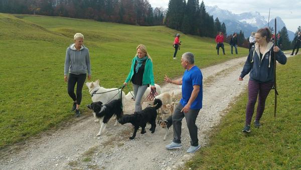 """Cesar Millan (r.) gibt Anweisungen beim sogenannten """"Pack Walk"""", dem gleichzeigen Führen mehrere Hunde"""