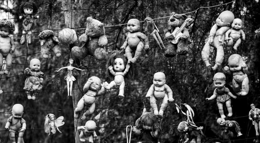 """Auf der """"Insel der toten Puppen"""" (Isla de las Muñecas) in Mexiko, sind Hunderte verstümmelte Spielzeugpuppen in den Bäumen aufgehängt. Sie sollten ursprünglich den Geist eines Mädchens vertreiben, das angeblich nahe der Insel ertrunken war"""