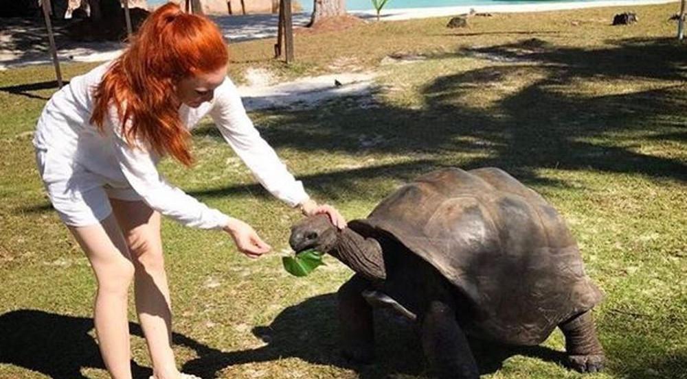 Barbara Meiers schönste Urlaubserinnerung: ihre Begegnung mit einer Schildkröte
