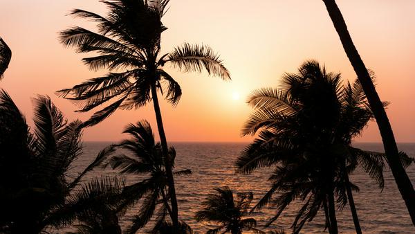 Von der portugiesischen Kolonie zum Aussteigeridyll - Goa hat sich über die Jahre zum wahr gewordenen Traum von Bob-Marley-Fans entwickelt. Aber der kleinste indische Bundesstaat kann noch viel mehr sein...