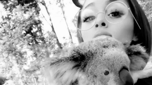 Ariana Grande möchte den Koala gar nicht mehr loslassen
