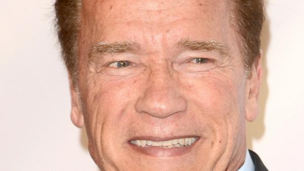 Arnold Schwarzenegger wurde in Österreich geboren