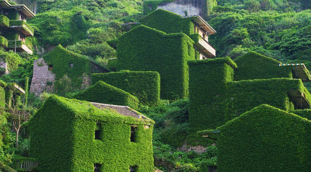 Die mit Efeu dicht bewachsenen Ruinen sind ikonisch für Shengshan