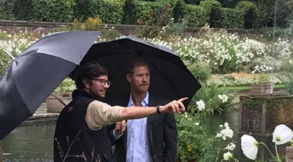 Prinz Harry inmitten des weißen Blumenmeers - 12.000 Blüten sind es insgesamt
