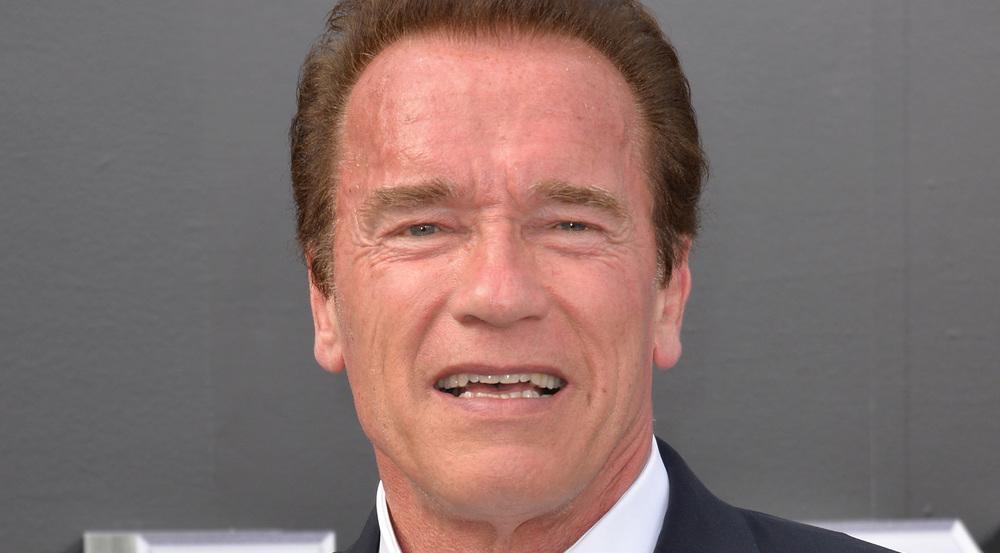 Arnold Schwarzenegger feiert die USA