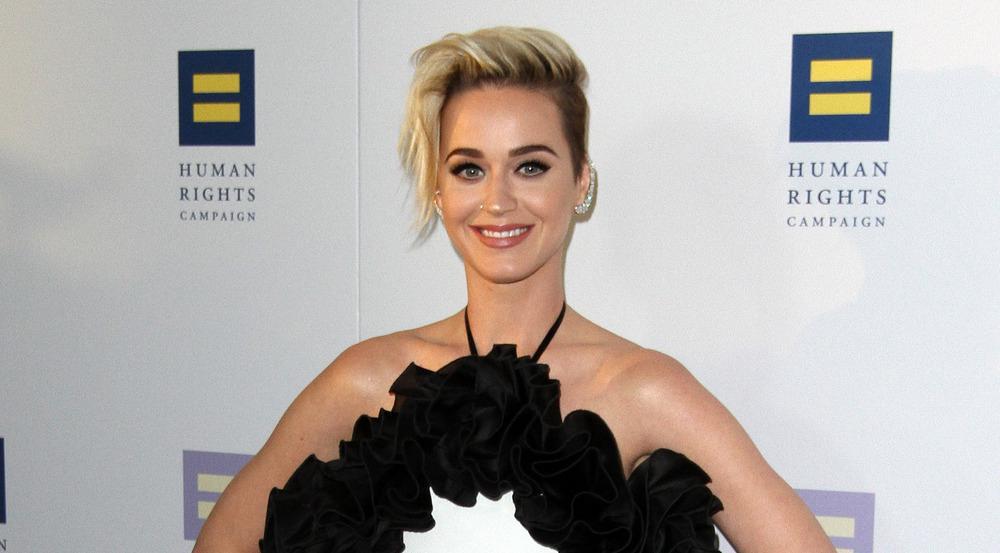 Sängerin Katy Perry animiert ihre Fans zu wohltätigen Spendenaktionen