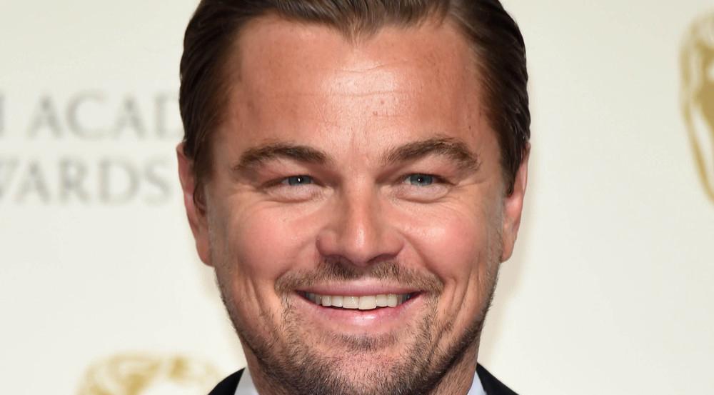 Leonardo DiCaprio kümmert sich jetzt um den Kalifornischen Schweinswal