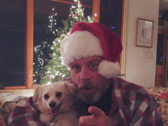 Ein Jedi als Weihnachtsmann: Mark Hamill