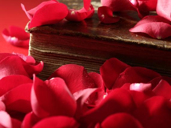 Liebesbücher lesen sich nicht nur am Valentinstag gut