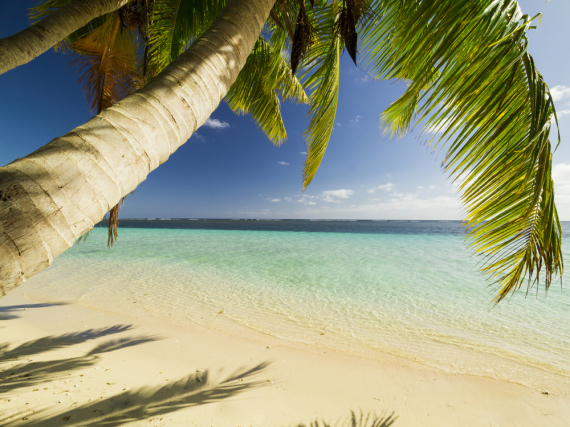 Weiße Sandstrände und Palmen, Samoa ist ein kleines Paradies