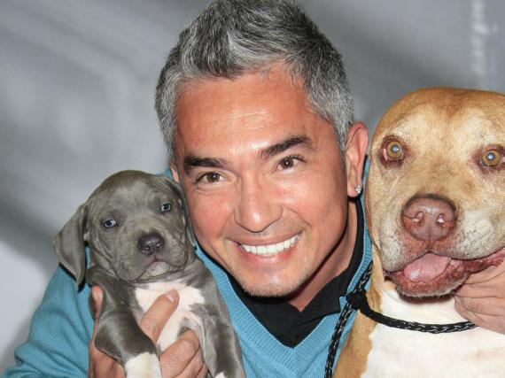 Cesar Millan und zwei seiner Hunde-Freunde