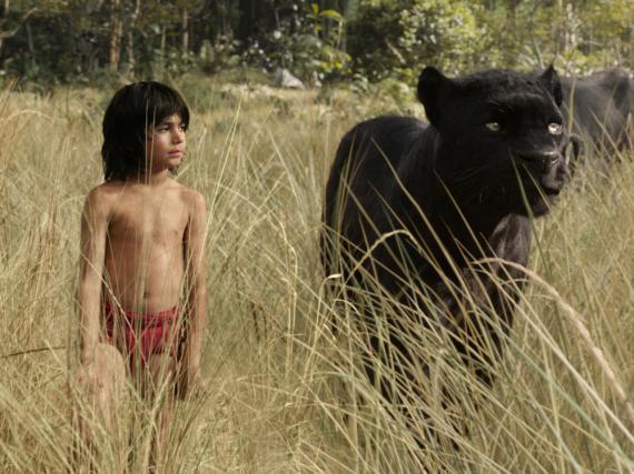 Von Bär Balu bis wie hier Panther Baghira wurden alle Tiere in