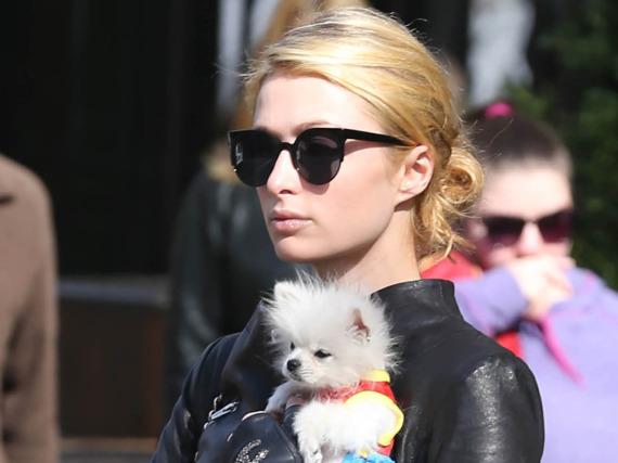 Keine Gnade mehr für Conrad Hughes Hilton: Paris Hiltons Bruder muss ins Gefängnis