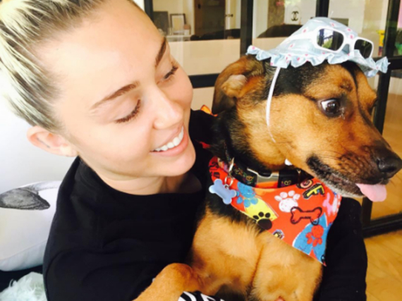 Miley Cyrus mit ihrem Hund Happy