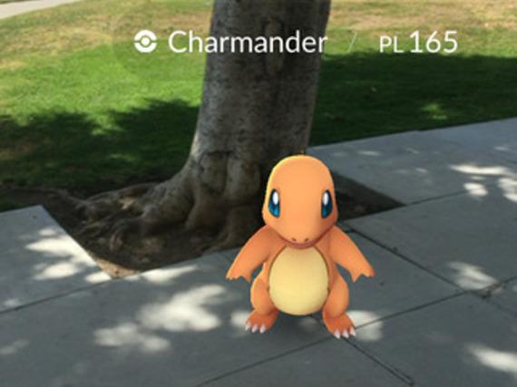 Mithilfe von Pokébällen lassen sich die Pokémon einfangen