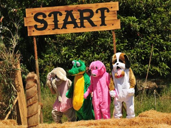 Plüschtierlauf im Sommerhaus: Bei der dritten Aufgabe müssen die Kandidaten im Kostüm Herzen sammeln
