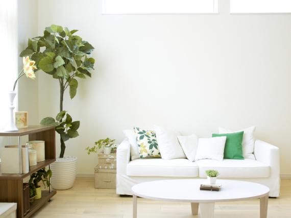 Es grünt im Interieur: Der Jungle-Trend verleiht dem Zuhause einen Hauch Exotik