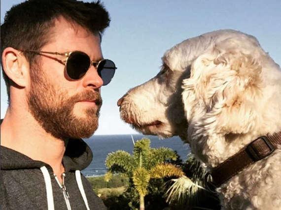 Chris Hemsworth gewann den Starr-Wettbewerb gegen seinen Hund