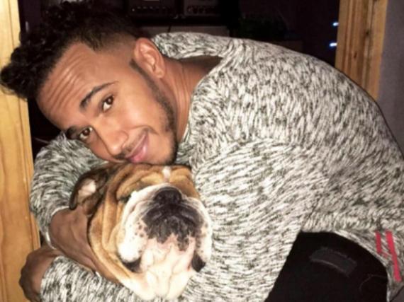Lewis Hamilton knuddelt seinen Hund