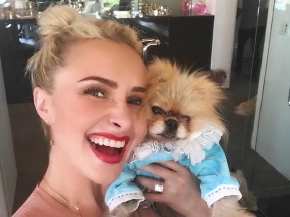 Hayden Panettiere schmust mit dem Promi-Hund Giggy