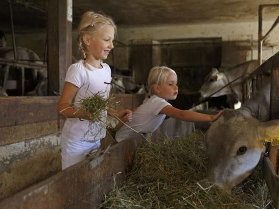 Tiere stehen bei den kleinen Südtirol-Urlaubern hoch im Kurs