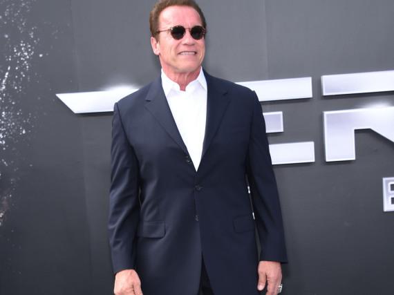 Arnold Schwarzenegger: Seine
