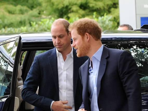 Prinz William und Prinz Harry gedenken mit der Verleihung ihrer verstorbenen Mutter Lady Diana